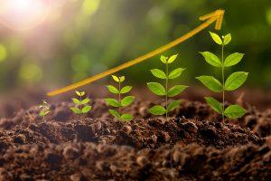 Energie Alternative - Efficientamento Energetico